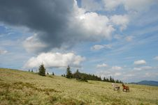 Horses In Mountains Under Huge Clouds Royalty Free Stock Photo