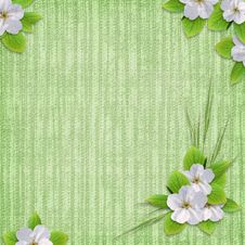 Free Card For The Holiday  With Flowers Stock Images - 14291444
