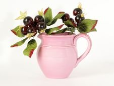 Free Pink Ceramic Jar With A Sprig Of Souvenir Berries Royalty Free Stock Photo - 14291515