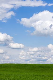 Free Green Field Stock Images - 14293274