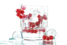 Free Red Currant With An Ice Royalty Free Stock Photos - 14293668
