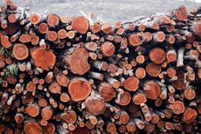Free Pile Of Wooden Logs Royalty Free Stock Images - 14295189
