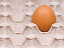 Free Eggs In Box Royalty Free Stock Photography - 14296207