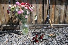 Free Stock Image Of Garden Tools With Carnations Royalty Free Stock Photo - 14298055