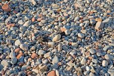 Free Pebble Beach: Background  Stock Images - 14298294