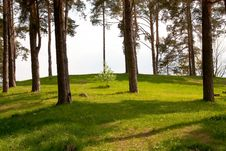 Free Landscape Stock Images - 14299714