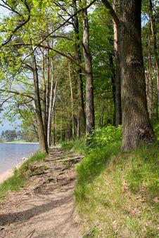 Free Landscape Stock Image - 14299731