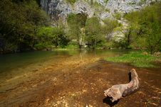 Free Stream In The Mountains In Spring Royalty Free Stock Image - 14299966