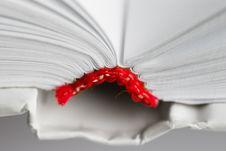 Free Open Book Stock Photos - 1430143