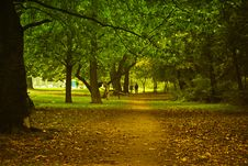 Free Park Stock Image - 1431301