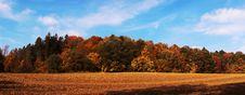 Free Autumn Stock Photo - 1431380