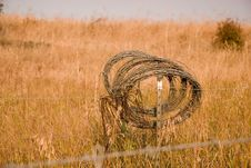 Free Country Barbwire Royalty Free Stock Photos - 1432558