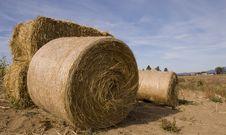 Free Hay Bale Royalty Free Stock Image - 1432586