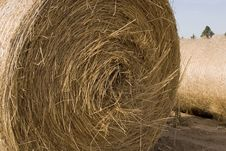 Rolled Hay Royalty Free Stock Images