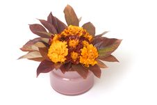 Free Autumn Flower Composition Royalty Free Stock Photography - 1434157
