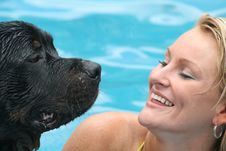 Free Swimming With Dog Stock Photo - 1435560