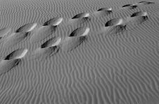 Free Footsteps In The Sand Dunes Stock Photography - 1436662