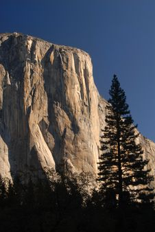 Free Morning Sun Hitting El Capitan In Yosemite National Park Royalty Free Stock Image - 1436726
