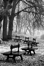 Free Benches In The Park Stock Photos - 14302083