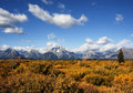 Free Grand Teton National Park Royalty Free Stock Images - 14306809