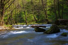 Free Stream In The Mountains Royalty Free Stock Image - 14300256