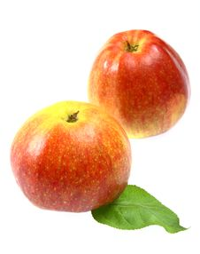 Free Red Apples Stock Images - 14301414