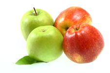 Free Ripe Fresh Red And Green Apples Royalty Free Stock Photo - 14301415