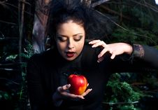 Free Stepmother Casts A Spell Over The Apple Stock Image - 14302421