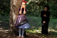 Free Stepmother Gives Poisoned Apple To Snow White Stock Images - 14302484