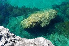 Free A Stone Under The Sea Stock Photography - 14303102