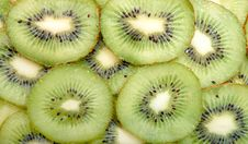 Free Kiwi Stock Photography - 14306002