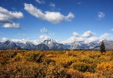 Free Grand Teton National Park Royalty Free Stock Images - 14306809