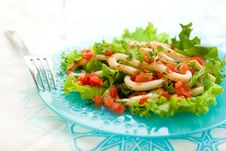 Free Grilled Calamari Stock Photography - 14306982