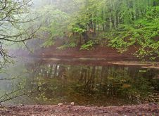 Free Lake In Mist Stock Images - 14309924