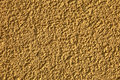 Free Wall Rough Surface. Stock Photography - 14310412