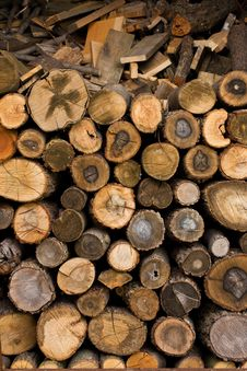 Free Wood Background Stock Photos - 14310473