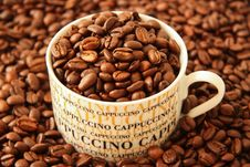 Free Coffee Beans In A Cappuccino Cup Royalty Free Stock Photography - 14310587