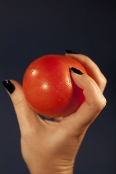 Holding A Tomatoe Stock Photography