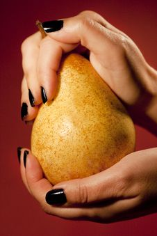 Hands Holding Pear Royalty Free Stock Photography
