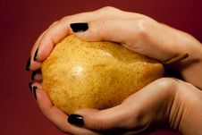 Holding A Pear Stock Photo