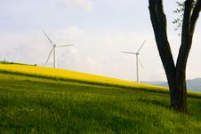 Free Windmill And Rape Field Royalty Free Stock Images - 14311269