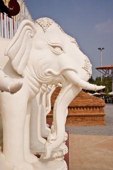 Free Elephant Carve In Royal Flora Ratchapruek Of Thail Stock Image - 14311781