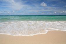 Free The Beach Royalty Free Stock Photo - 14313635