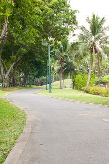 Curve Sidewalk In The Park Royalty Free Stock Image