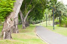 Curve Sidewalk In The Park Royalty Free Stock Photography