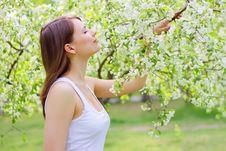 Free Beautiful Girl Stock Photography - 14314712