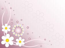 Free Flower Background Royalty Free Stock Photo - 14315565