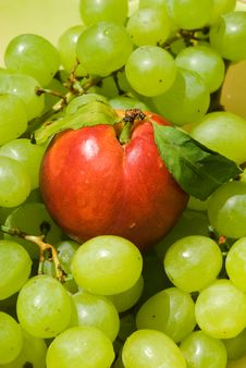 Free Nectarine And Grape Royalty Free Stock Photo - 14316865