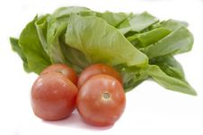 Free Tomato And Lettuce Stock Images - 14318004