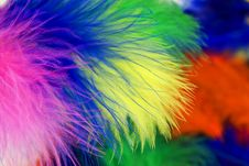 Free Colored Feathers Royalty Free Stock Photos - 14319408